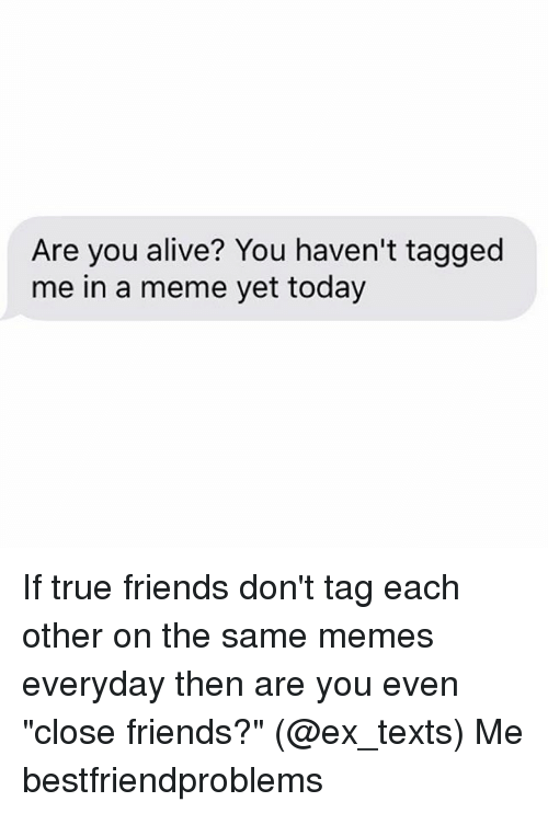 "Alive, Friends, and Meme: Are you alive? You haven't tagged  me in a meme yet today If true friends don't tag each other on the same memes everyday then are you even ""close friends?"" (@ex_texts) Me bestfriendproblems"