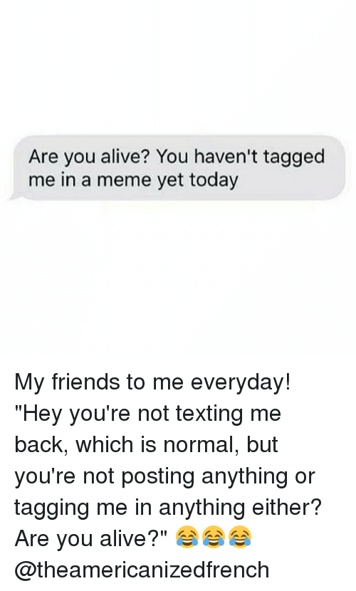 "Alive, Friends, and Meme: Are you alive? You haven't tagged  me in a meme yet today My friends to me everyday! ""Hey you're not texting me back, which is normal, but you're not posting anything or tagging me in anything either? Are you alive?"" 😂😂😂 @theamericanizedfrench"