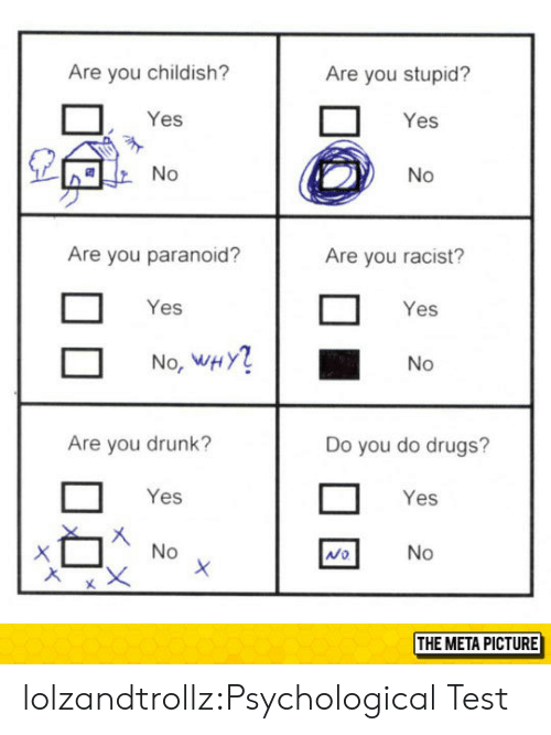 Drugs, Drunk, and Tumblr: Are you childish?  Are you stupid?  Yes  Yes  Are you paranoid?  Are you racist?  Yes  Yes  No, WHY  No  Are you drunk?  Do you do drugs?  Yes  Yes  Mo  THE META PICTURE lolzandtrollz:Psychological Test