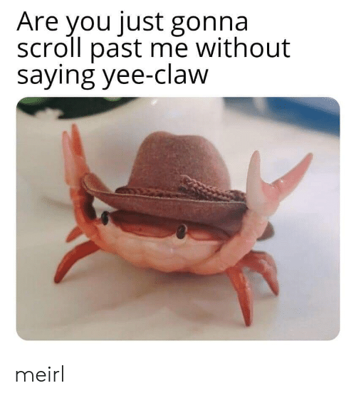 Claw: Are you just gonna  scroll past me without  saying yee-claw meirl