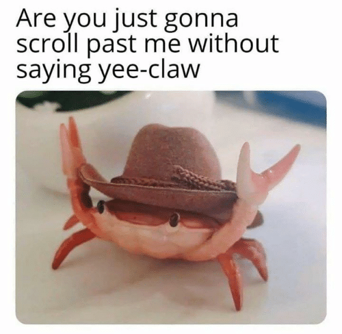 Claw: Are you just gonna  scroll past me without  saying yee-claw