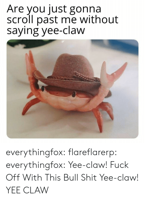Shit, Tumblr, and Yee: Are you just gonna  scroll past me without  saying yee-claw everythingfox:   flareflarerp:   everythingfox:  Yee-claw!  Fuck Off With This Bull Shit   Yee-claw!   YEE CLAW