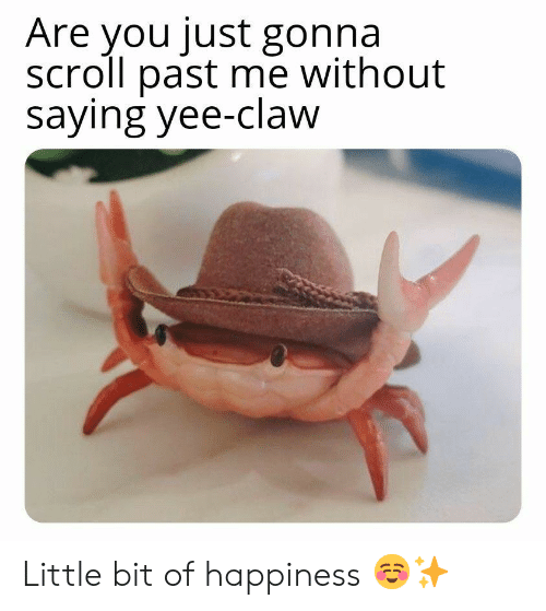 Yee, Happiness, and You: Are you just gonna  scroll past me without  saying yee-claw Little bit of happiness ☺✨