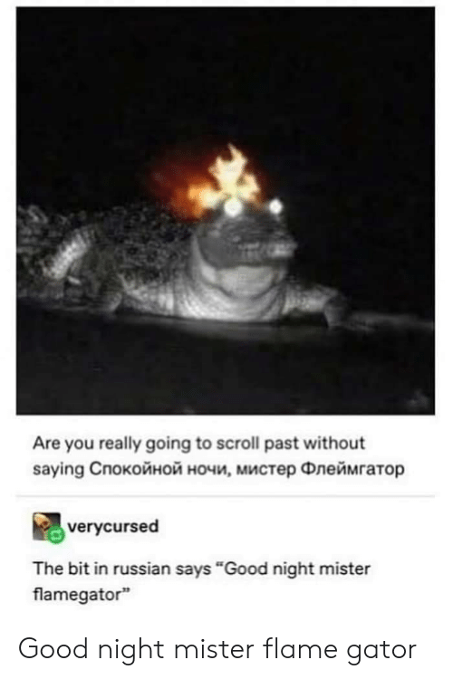 "Good, Russian, and Flame: Are you really going to scroll past without  saying Cпокойной ночи, мистер Флеймгатор  verycursed  The bit in russian says ""Good night mister  flamegator Good night mister flame gator"