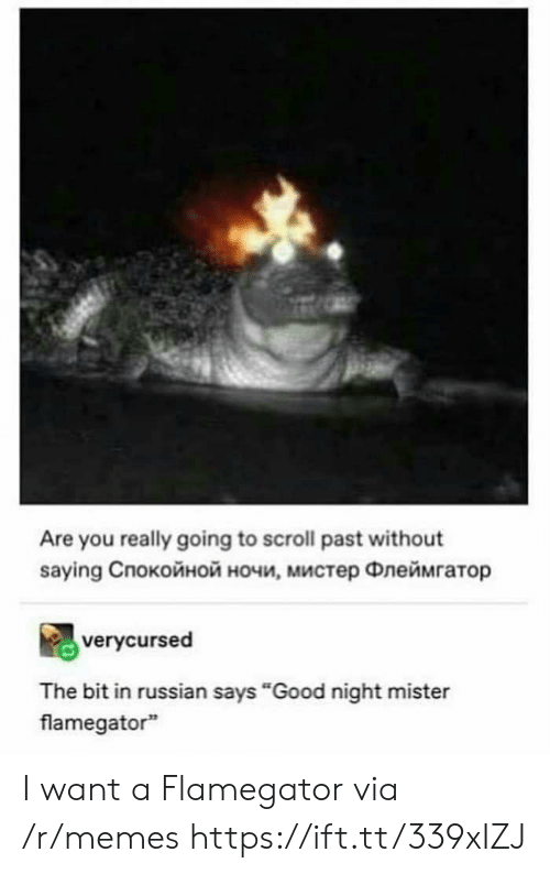 "Memes, Good, and Russian: Are you really going to scroll past without  saying Cпокойной ночи, мистер Флеймгатор  verycursed  The bit in russian says ""Good night mister  flamegator I want a Flamegator via /r/memes https://ift.tt/339xIZJ"