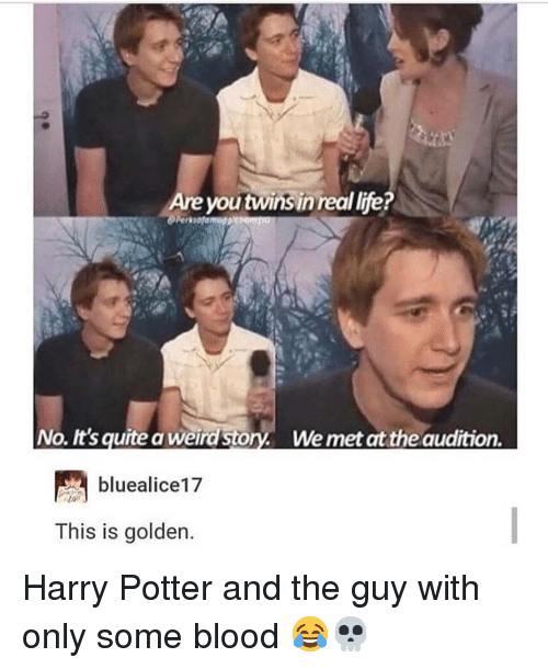 Harry Potter, Life, and Memes: Are youtwinsin real life?  No. It's quite a weird Story. We met at the audition.  bluealice17  This is golden Harry Potter and the guy with only some blood 😂💀