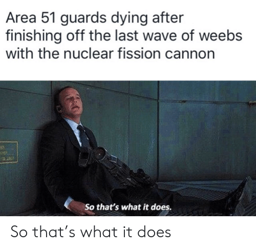 Area 51, Wave, and Cannon: Area 51 guards dying after  finishing off the last wave of weebs  with the nuclear fission cannon  25  So that's what it does. So that's what it does