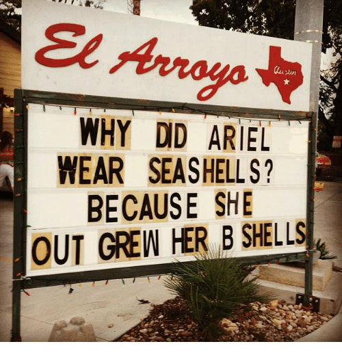 Dank, 🤖, and  Wear: Arroyo.  WHY DID ARIEL  WEAR SEASHELLS?  BECAUSE SHE  OUT GREW HER B SHELLS