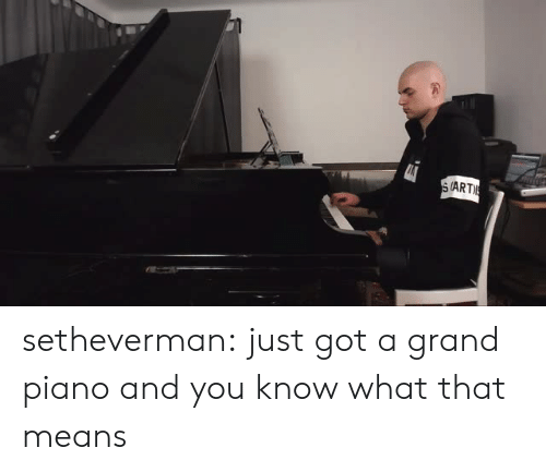 Tumblr, Blog, and Http: (ART setheverman:   just got a grand piano and you know what that means