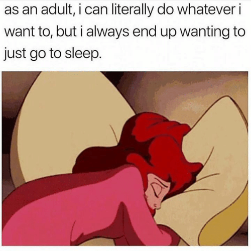Dank, Go to Sleep, and Sleep: as an adult, i can literally do whatever i  want to, but i always end up wanting to  just go to sleep