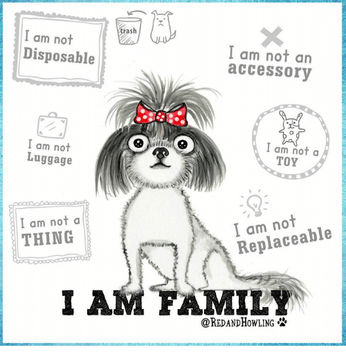 Memes, Luggage, and 🤖: as  I am not  Disposable  I am not an  accessory  I am not  Luggage  Iam not a  TOY  I am nota  THING  I am not  Replaceable  I A  MILY  OREDANDHOWLING必