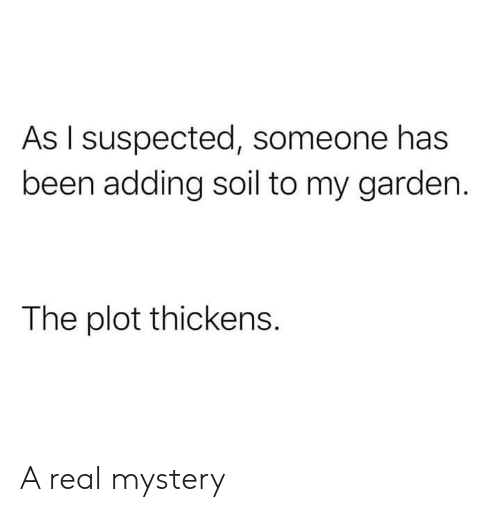 Mystery, Been, and Soil: As I suspected, someone has  been adding soil to my garden.  The plot thickens. A real mystery