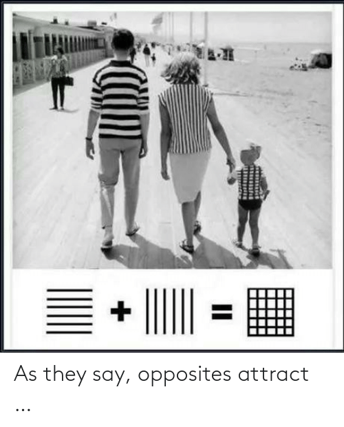 They Say: As they say, opposites attract …