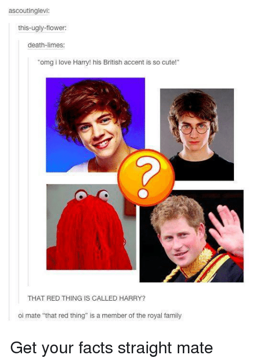 """oi mate: ascoutinglevi  this-ugly-flower:  death-limes.  """"omg i love Harry! his British accent is so cute!""""  THAT RED THING IS CALLED HARRY?  oi mate """"that red thing"""" is a member of the royal family Get your facts straight mate"""