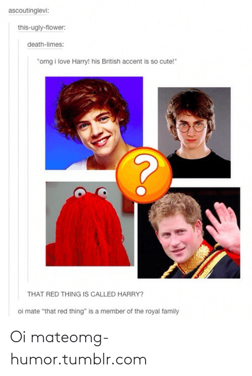 """oi mate: ascoutinglevi:  this-ugly-flower:  death-limes:  """"omg i love Harry! his British accent is so cute!""""  THAT RED THING IS CALLED HARRY?  oi mate """"that red thing"""" is a member of the royal family Oi mateomg-humor.tumblr.com"""