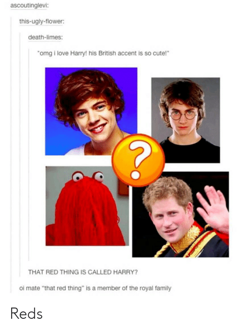 """oi mate: ascoutinglevi  this-ugly-flower:  death-limes:  omgi love Harry! his British accent is so cute!  THAT RED THING IS CALLED HARRY?  oi mate """"that red thing"""" is a member of the royal family Reds"""