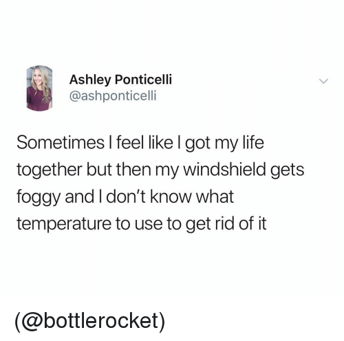 windshield: Ashley Ponticelli  @ashponticelli  Sometimes l feel like l got my life  together but then my windshield gets  foggy and I don't know what  temperature to use to get rid of it (@bottlerocket)