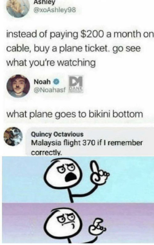 Flight: Ashley  @xoAshley98  instead of paying $200 a month on  cable, buy a plane ticket. go see  what you're watching  Noah o DM  @Noahasf DANS  what plane goes to bikini bottom  Quincy Octavious  Malaysia flight 370 if I remember  correctly.