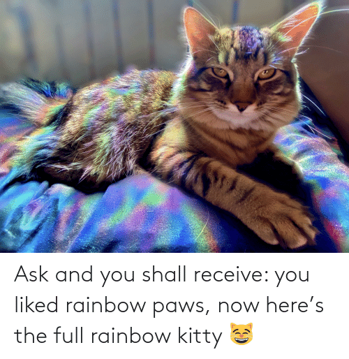 Paws: Ask and you shall receive: you liked rainbow paws, now here's the full rainbow kitty 😸