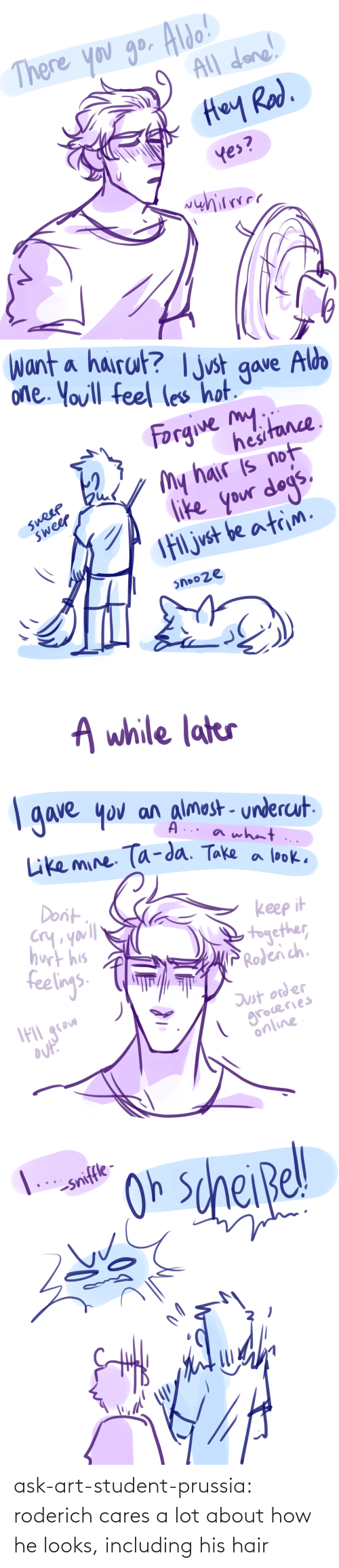 His: ask-art-student-prussia:  roderich cares a lot about how he looks, including his hair