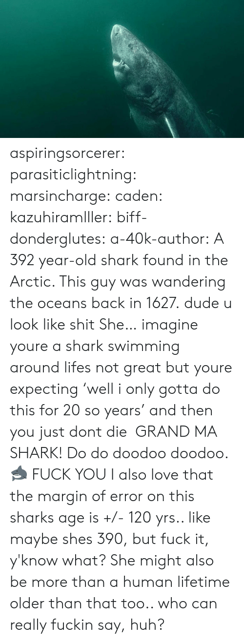 Dude, Fuck You, and Huh: aspiringsorcerer: parasiticlightning:   marsincharge:  caden:  kazuhiramlller:  biff-donderglutes:   a-40k-author: A 392 year-old shark found in the Arctic. This guy was wandering the oceans back in 1627. dude u look like shit   She…  imagine youre a shark swimming around lifes not great but youre expecting 'well i only gotta do this for 20 so years' and then you just dont die    GRAND MA SHARK! Do do doodoo doodoo. 🦈    FUCK YOU    I also love that the margin of error on this sharks age is +/- 120 yrs.. like maybe shes 390, but fuck it, y'know what? She might also be more than a human lifetime older than that too.. who can really fuckin say, huh?