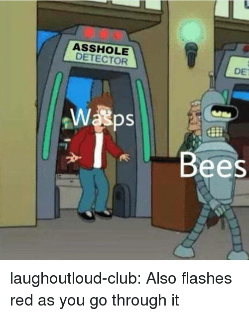 Club, Tumblr, and Blog: ASSHOLE  DETECTOR  DE  Bees laughoutloud-club:  Also flashes red as you go through it