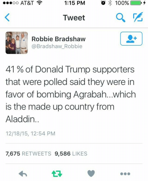 In Favor: AT&T  1:15 PM  。 : 100%) 0.4  Iweet  Robbie Bradshaw  @Bradshaw_Robbie  41 % of Donald Trump supporters  that were polled said they were in  favor of bombing Agrabah...which  is the made up country from  Aladdin  12/18/15, 12:54 PM  7,675 RETWEETS 9,586 LIKES