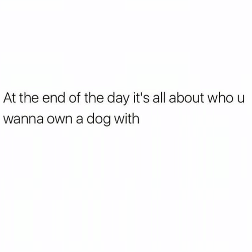 Relationships, Dog, and Who: At the end of the day it's all about who u  wanna own a dog with