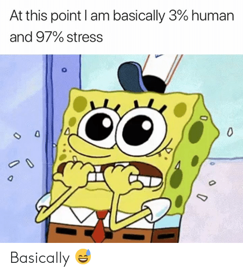 Human, Stress, and This: At this point I am basically 3% human  and 97% stress  0  O Basically 😅