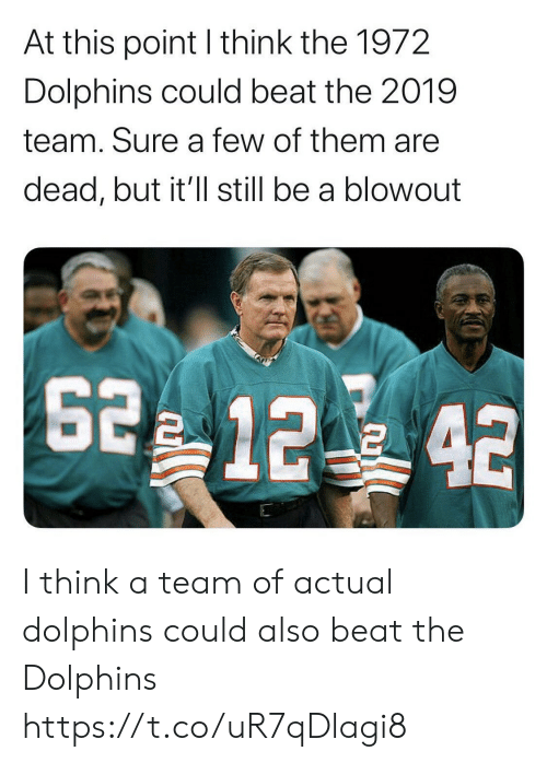a team: At this point I think the 1972  Dolphins could beat the 2019  team. Sure a few of them are  dead, but it'll still be a blowout  2 12 42 I think a team of actual dolphins could also beat the Dolphins https://t.co/uR7qDlagi8