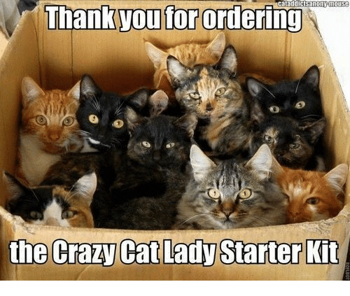 crazy cats: ataddictsanonytilouse  Man you forordering  the Crazy Cat Lady Starter Kit