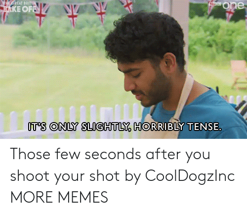 Tense: ataeOne  THE GREAT BRITIS  AKE OFFN  IT'S ONLY SLIGHTLY, HORRIBLY TENSE Those few seconds after you shoot your shot by CoolDogzInc MORE MEMES