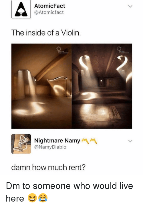 Memes, Live, and 🤖: AtomicFact  @Atomicfact  The inside of a Violin.  Nightmare Namy  @NamyDiablo  damn how much rent? Dm to someone who would live here 😆😂