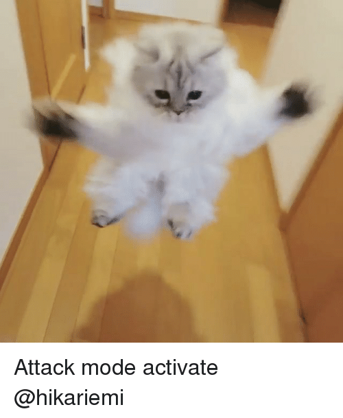Memes, 🤖, and Mode: Attack mode activate @hikariemi