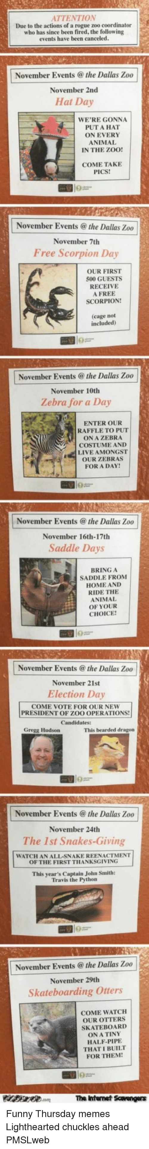 Funny, Memes, and Otters: ATTENTION  Due to the actions of a rogue zoo coordinator  who has since been fired, the following  events have been canceled.  November Events @ the Dallas Zoo  November 2nd  Hat Day  WE'RE GONNA  PUT A HAT  ON EVERY  ANIMAL  IN THE ZOO!  COME TAKE  PICS!  November Events @the Dallas Zoo  November 7th  Free Scorpion Day  OUR FIRST  500 GUESTS  RECEIVE  A FREE  SCORPION!  (cage not  included)  November Events @the Dallas Zoo  November 10th  Zebra for a Day  ENTER OUR  RAFFLE TO PUT  ON A ZEBRA  COSTUME AND  LIVE AMONGST  OUR ZEBRAS  FOR A DAY  November Events @the Dallas Zoo  November 16th-17th  Saddle Days  BRING A  SADDLE FROM  HOME AND  RIDE THE  ANIMAL  OF YOUR  CHOICE  November Events@ the Dallas Zoo  November 21st  Election Day  COME VOTE FOR OUR NEW  PRESIDENT OF ZOO OPERATIONS!  Gregg Hudson  This bearded dragon  November Events @the Dallas Zoo  November 24th  The 1st Snakes-Giving  WATCH AN ALL-SNAKE REENACTMENT  OF THE FIRST THANKSGIVING  This year's Captain John Smith:  Travis the Python  November Eventsthe Dallas Zoo  November 29th  Skateboarding Otters  COME WATCH  OUR OTTERS  SKATEBOARD  ON A TINY  HALF-PIPE  THAT I BUILT  FOR THEM  The Intenet Scavengers <p>Funny Thursday memes  Lighthearted chuckles ahead  PMSLweb </p>