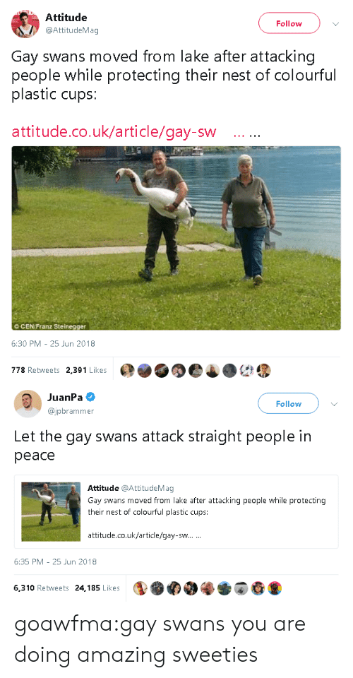 Target, Tumblr, and Blog: Attitude  @AttitudeMag  Follow  Gay swans moved from lake after attacking  people while protecting their nest of colourful  plastic cups:  attitude.co.uk/article/gay-sw  ©CEN/Franz Steinegger  6:30 PM-25 Jun 2018  778 Retweets 2,391 Likes   JuanPa  @jpbrammer  Follow  Let the gay swans attack straight people in  peace  Attitude @AttitudeMag  Gay swans moved from lake after attacking people while protecting  their nest of colourful plastic cups:  attitude.co.uk/article/gay-sw  6:35 PM 25 Jun 2018  6,310 Retweets 24,185 Likes goawfma:gay swans you are doing amazing sweeties