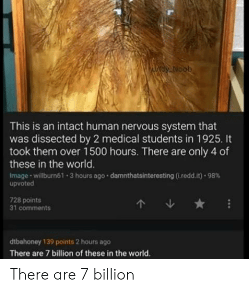 Medical Students: AUADY Noob  This is an intact human nervous system that  was dissected by 2 medical students in 1925. It  took them over 1500 hours. There are only 4 of  these in the world.  Image-willburn61-3 hours ago damnthatsinteresting (.redd.it) 98%  upvoted  728 points  31 comments  dtbahoney 139 points 2 hours ago  There are 7 billion of these in the world. There are 7 billion