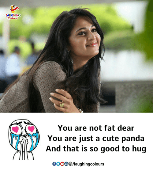 Cute, Panda, and Good: AUGHING  You are not fat dear  You are just a cute panda  And that is so good to hug  0OoO/laughingcolours
