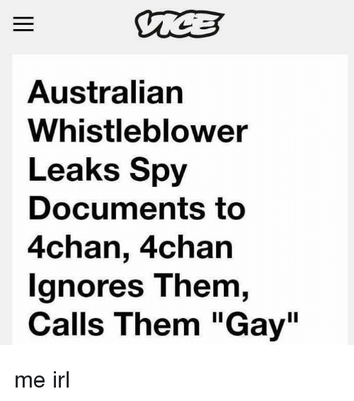 "4chan, Irl, and Australian: Australian  Whistleblower  Leaks Spy  Documents to  4chan, 4chan  gnores T hem,  Calls Them ""Gay"" me irl"