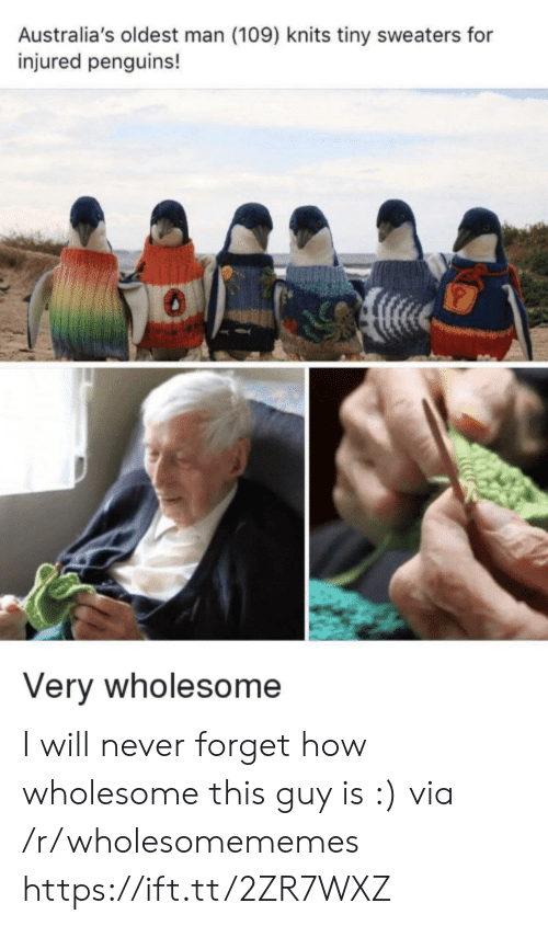 Penguins: Australia's oldest man (109) knits tiny sweaters for  injured penguins!  Very wholesome I will never forget how wholesome this guy is :) via /r/wholesomememes https://ift.tt/2ZR7WXZ