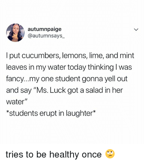 "Fancy, Today, and Water: autumnpaige  @autumnsays  I put cucumbers, lemons, lime, and mint  leaves in my water today thinking l was  fancy...my one student gonna yell out  and say ""Ms. Luck got a salad in her  water""  *students erupt in laughter* tries to be healthy once 🙄"