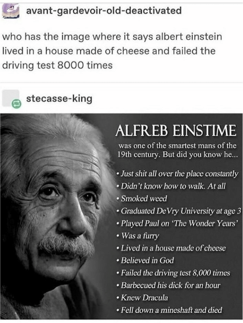 Dracula: avant-gardevoir-old-deactivated  who has the image where it says albert einstein  lived in a house made of cheese and failed the  driving test 8000 times  stecasse-king  ALFREB EINSTIME  was one of the smartest mans of the  19th century. But did you know he...  Just shit all over the place constantly  Didn't know how to walk. At all  Smoked weed  .Graduated De Vry University at age 3  Played Paul on The Wonder Years'  Was a furry  Lived in a house made of cheese  Believed in God  Failed the driving test 8,000 times  Barbecued his dick for an hour  Knew Dracula  Fell down a mineshaft and died