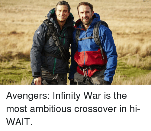 Memes, Avengers, and Infinity: Avengers: Infinity War is the most ambitious crossover in hi- WAIT.