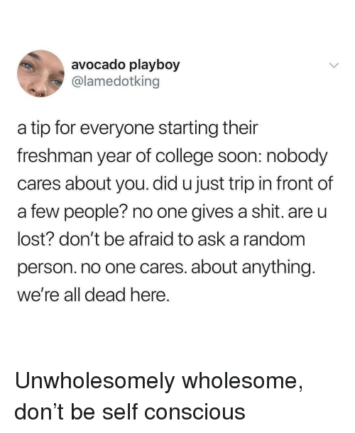 Gives A Shit: avocado playboy  @lamedotking  a tip for everyone starting their  freshman year of college soon: nobody  cares about you. did u just trip in front of  a few people? no one gives a shit. are u  lost? don't be afraid to ask a random  person. no one cares. about anything  We're all dead nere Unwholesomely wholesome, don't be self conscious