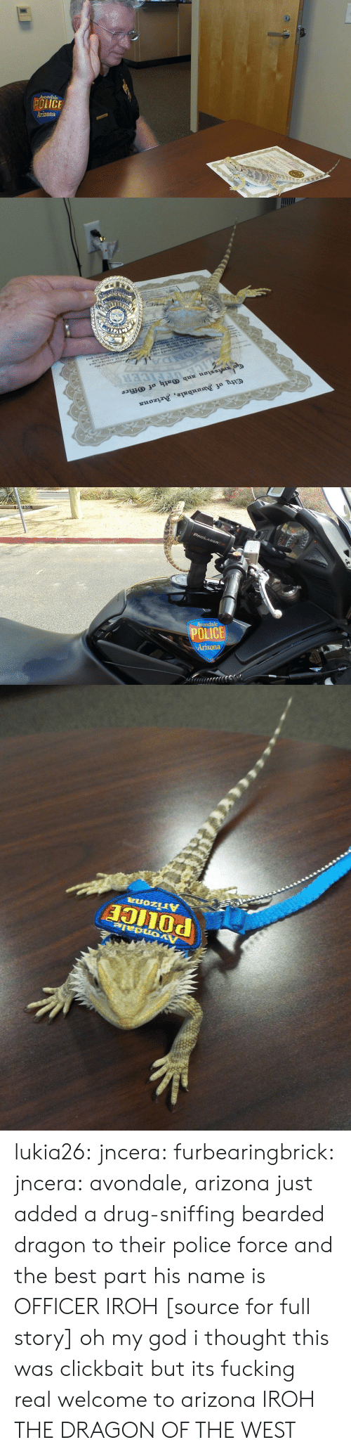 Bearded Dragon: Avondale  POLICE  Arizona   ty of anbale, Arizana  ssion xnb (rth of ffice  CER   PROLASER  Avondale  POLICE   PULICE  Arizona lukia26:  jncera:  furbearingbrick:  jncera:  avondale, arizona just added a drug-sniffing bearded dragon to their police force and the best part his name is OFFICER IROH [source for full story]  oh my god i thought this was clickbait but its fucking real  welcome to arizona  IROH THE DRAGON OF THE WEST
