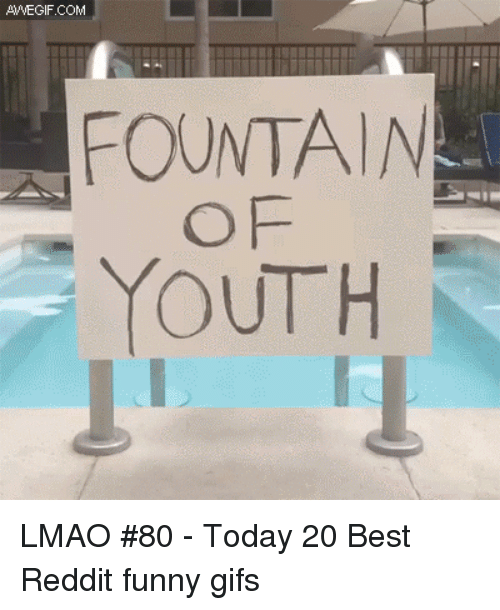 Funny, Funny Gifs, and Lmao: AVVEGIF.COM  FOUNTAIN  OF  YOUTH LMAO #80 - Today 20 Best Reddit funny gifs