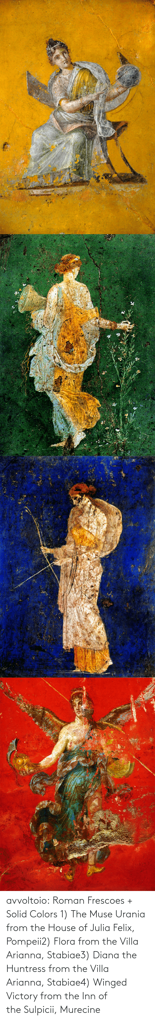 Roman: avvoltoio: Roman Frescoes + Solid Colors 1) The Muse Urania from the House of Julia Felix, Pompeii2) Flora from the Villa Arianna, Stabiae3) Diana the Huntress from the Villa Arianna, Stabiae4) Winged Victory from the Inn of the Sulpicii, Murecine