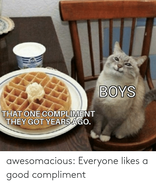 compliment: awesomacious:  Everyone likes a good compliment