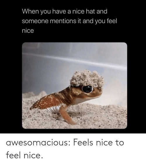 feels: awesomacious:  Feels nice to feel nice.