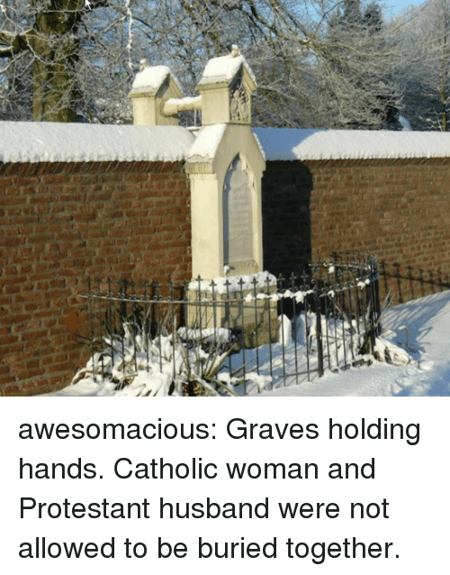 Tumblr, Blog, and Http: awesomacious:  Graves holding hands. Catholic woman and Protestant husband were not allowed to be buried together.